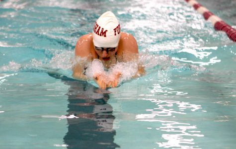 Swimming Sweeps Stags
