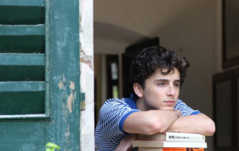 Call Me By Your Name: A Masterclass in Cinematic Sensuality