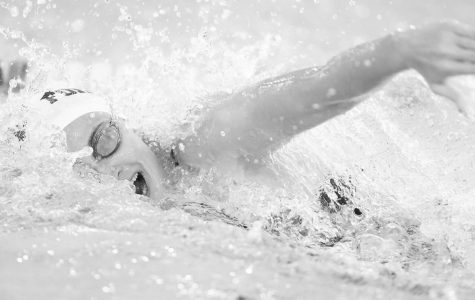 Swim and Dive Split on the Road vs. Georgetown