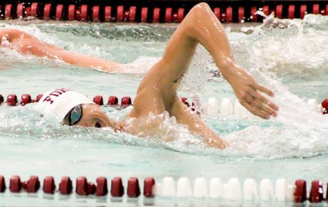 Swim and Dive Sweep Weekend Against NJIT, Stony Brook